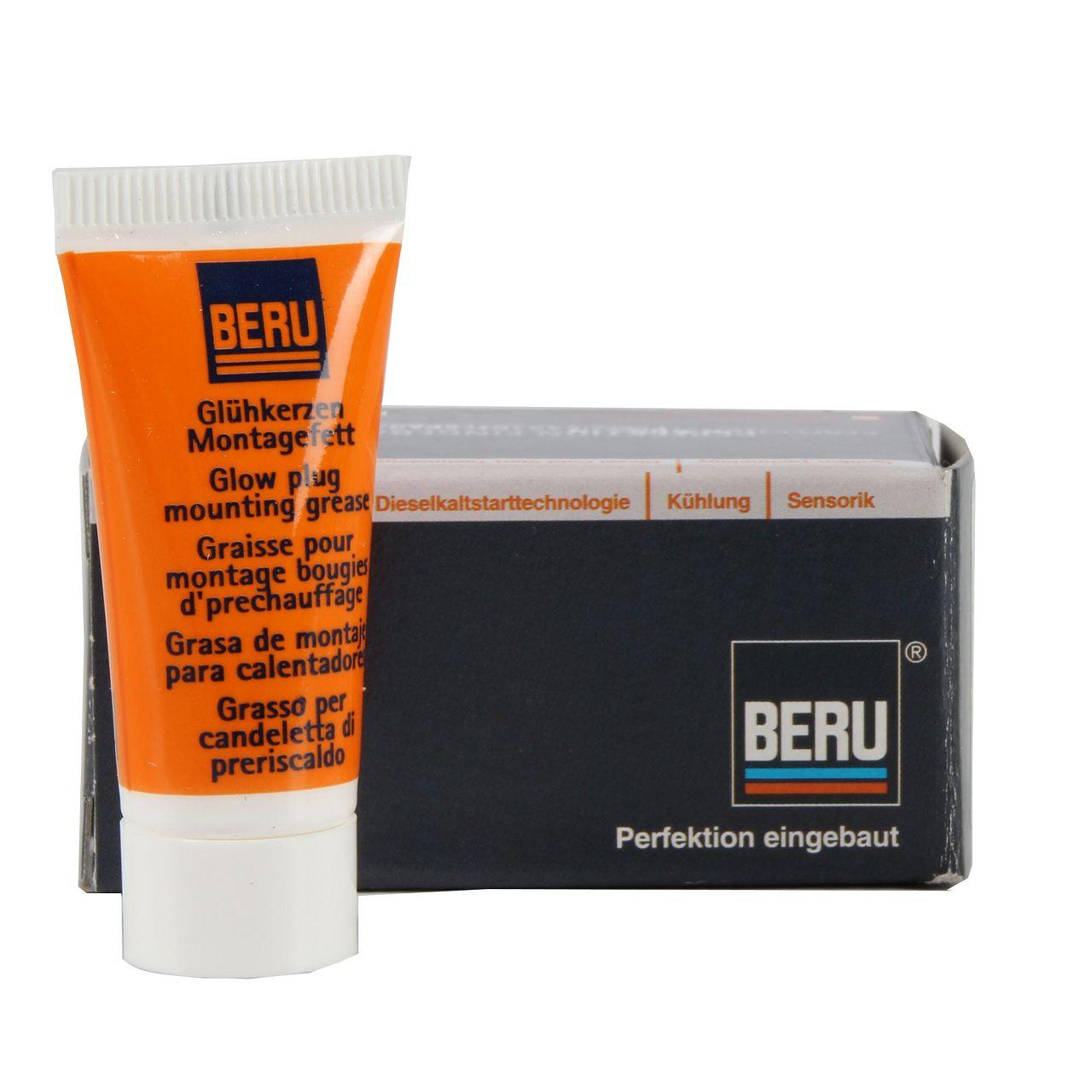 BERU GKF01 Fett Paste Glühkerzen Montagefett Steckerfett 0890300034 10g